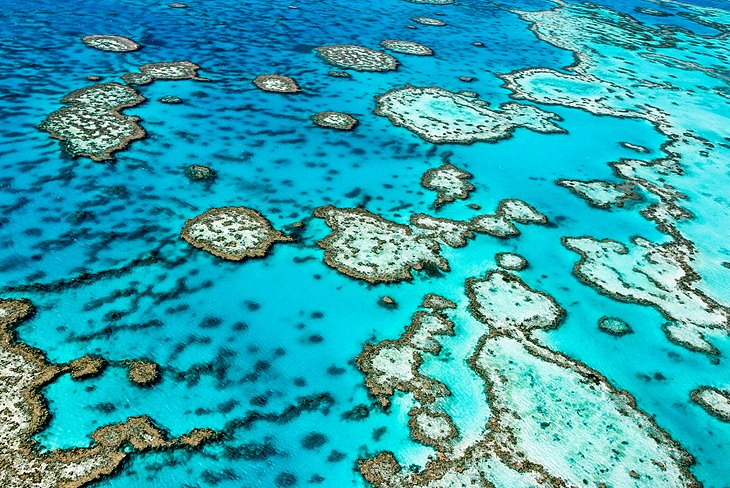 Great Barrier Reef Park