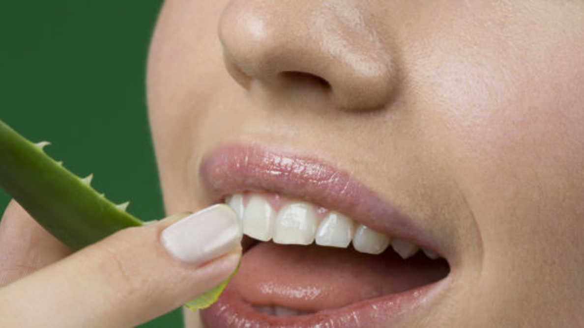 Benefits of Aloe for Your Dental Health